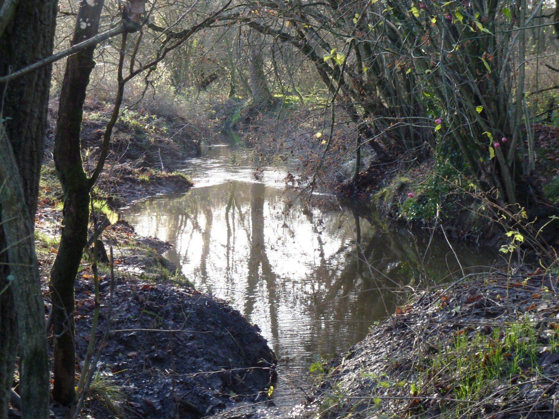 The Longford Stream