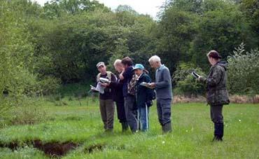 River surveys