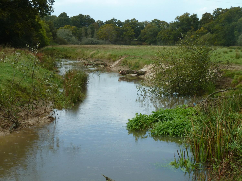 The River Channel Knepp Estate