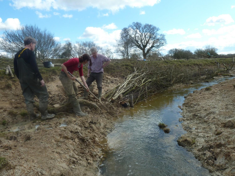 Knepp River Restoration