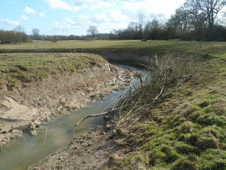 Knepp Estate River Restoration