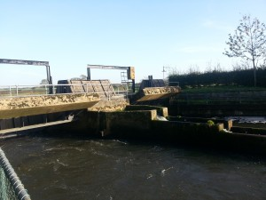 Anchor Sluice open for the winter