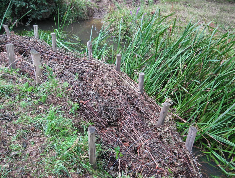 Longford stream berm