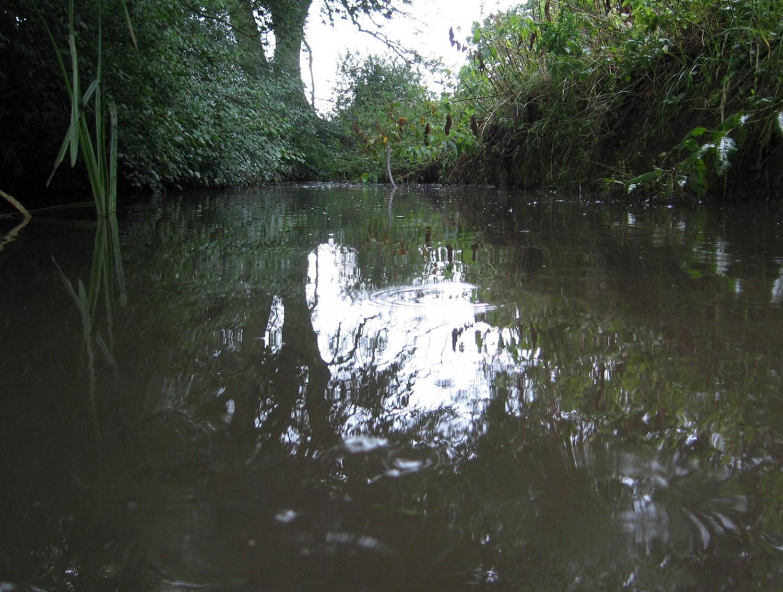 Lewes District Council flood management